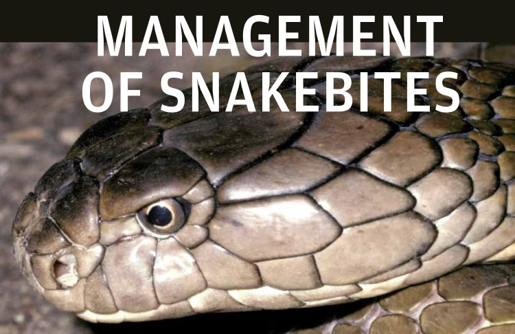"The Research Project ""Epidemiology of Snakebites in Can Tho City"" in 2018"